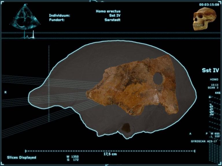 von GROTE Ausstellungsgestaltung und Design / Die Schöninger Speere – Mensch und Jagd vor 400.000 Jahren